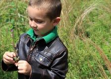 Милый мальчик смотря как раз выбранные wildflowers Стоковое фото RF