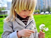 Милый мальчик с одуванчиками Стоковая Фотография