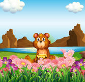 Милый медведь около цветков на речном береге Стоковая Фотография