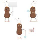 Милый муравей Стоковые Изображения RF