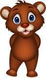 Милый представлять шаржа бурого медведя младенца иллюстрация штока
