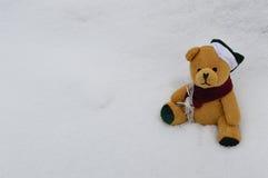 Милый плюшевый медвежонок сидит в снеге Стоковые Фотографии RF