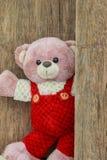Милый плюшевый медвежонок с старой древесиной Стоковые Фото