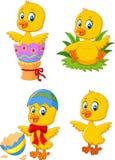 Милый смешной цыпленок младенца с комплектом собрания пасхального яйца иллюстрация вектора