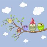 Милый сыч сидя на дереве Стоковые Изображения