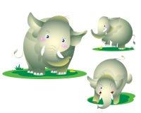 Милый слон капризный Стоковые Фото