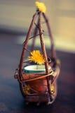 Милый цветочный горшок Стоковые Изображения