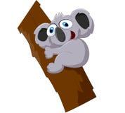 Милый шарж коалы на дереве Стоковые Фото
