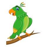 Милый шарж попугая бесплатная иллюстрация