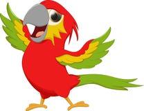 Милый шарж птицы macaw Стоковое фото RF