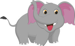 Милый шарж слона Стоковое фото RF