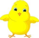 Милый шарж цыпленка Стоковая Фотография RF