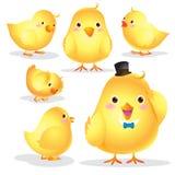 Милый шарж цыпленока Стоковое Фото