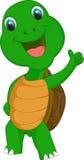 Милый шарж черепахи дает большой палец руки вверх Стоковая Фотография