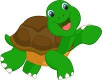 Милый шарж черепахи Стоковое Изображение RF