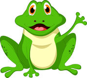 Милый шарж лягушки Стоковое Фото