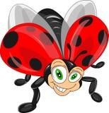 Милый шарж ladybug Стоковое фото RF