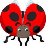 Милый шарж ladybug Стоковое Изображение