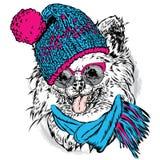 Милый щенок нося шляпу и шарф собака смешная бесплатная иллюстрация