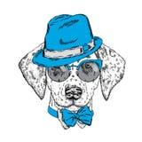 Милый щенок нося шляпу, солнечные очки и связь также вектор иллюстрации притяжки corel красивейшая собака dalmatians иллюстрация штока