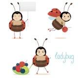 Милый Ladybug Стоковые Фото