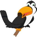 Милый toucan шарж птицы Стоковая Фотография