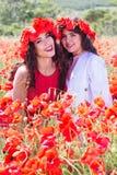 2 милых девушки в поле мака цветут Стоковая Фотография