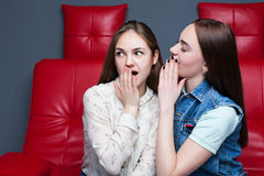2 милых девушки злословя на красном кожаном кресле Стоковые Изображения RF