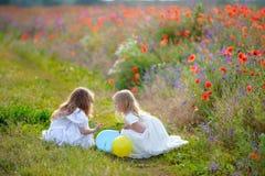 2 милых девушки тратя время в парке лета Стоковое Фото