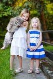 2 милых маленьких сестры и кот Стоковое Изображение RF