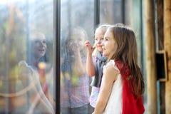 2 милых маленьких сестры наблюдая животных в зоопарке на теплый и солнечный летний день Стоковые Фотографии RF