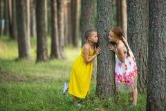 2 милых друз маленьких девочек в парке сосны Идти Стоковые Фотографии RF