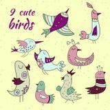 9 милых установленных птиц Стоковое Изображение RF