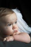 младенец ангела Стоковые Фотографии RF