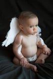 младенец ангела Стоковое Фото
