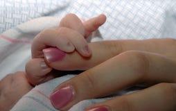 младенец вручает мать удерживания Стоковые Фотографии RF