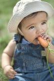 Младенец есть морковь Стоковое Фото
