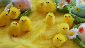 Младенец желтая пасха забавляется цыпленоки и яичка на предпосылке пер Праздничная видео- поздравительная открытка сток-видео