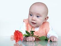 младенец красивейший стоковые фотографии rf