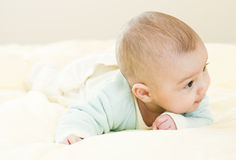 младенец любознательний Стоковые Фотографии RF