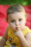 младенец любознательний Стоковые Изображения