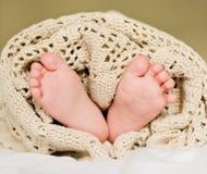 Младенец малая нога стоковое изображение rf