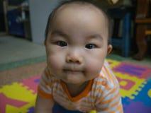 Младенец мальчика Cutie красивый азиатский стоковые фотографии rf