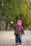 младенец осени меньший парк Стоковое Изображение
