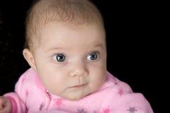 младенец пытливый стоковая фотография rf