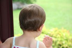 младенец смотря окно Стоковая Фотография RF