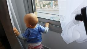 Младенец смотря через окно сток-видео