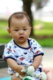 младенец собаки Стоковое Изображение