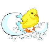 Младенец цыпленка hatchs яичка также вектор иллюстрации притяжки corel Стоковые Изображения