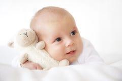 младенец newborn Стоковые Изображения RF